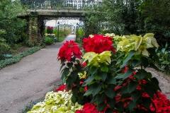 Bellingrath-Gardens-5