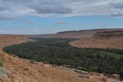 Ziz-Valley