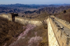 Great-Wall-2