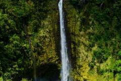 Akaka-Falls-2