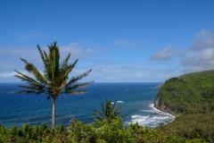Kohala-Coast