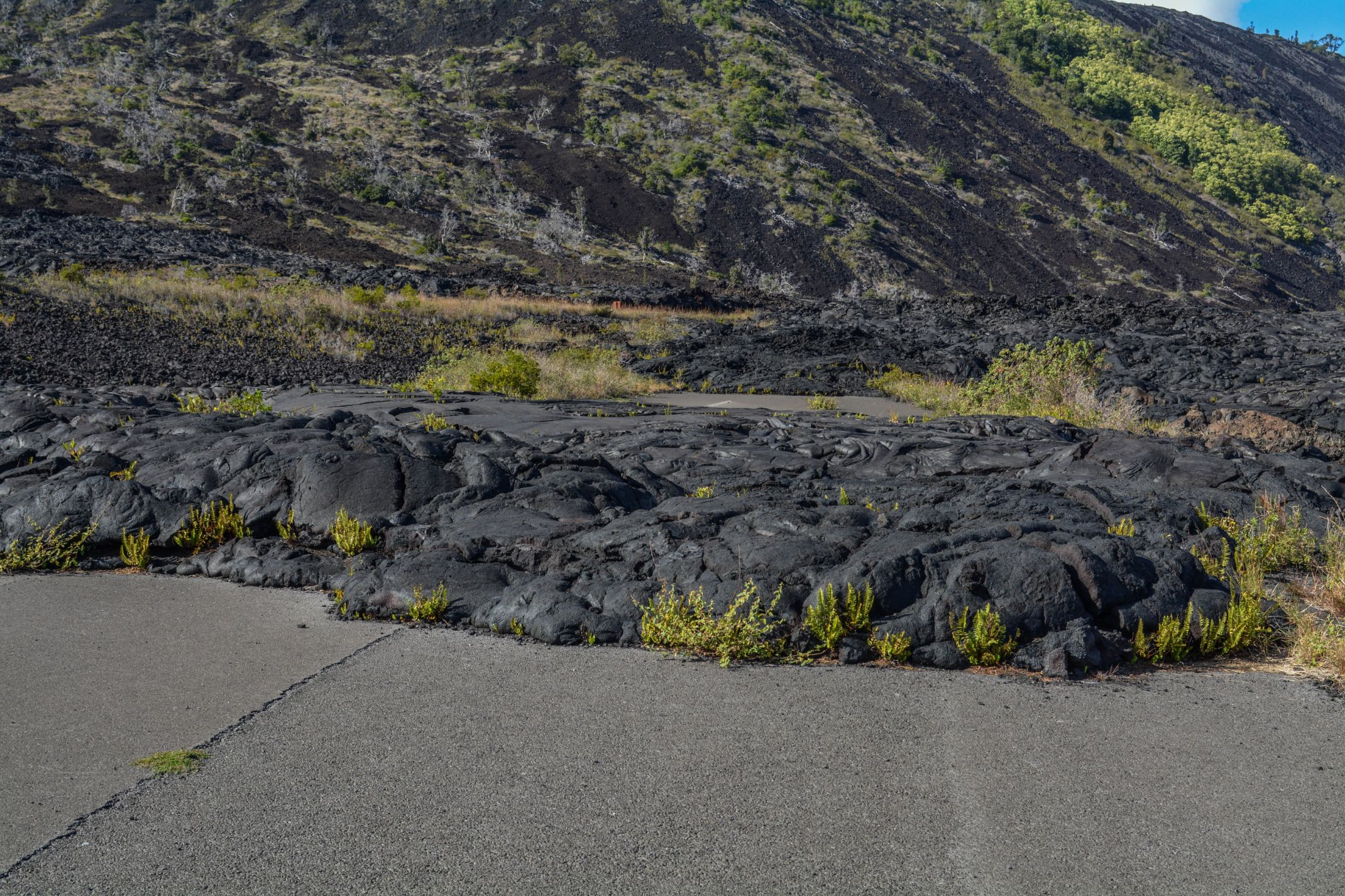 Lava-Over-the-Road