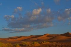 Sahara-15