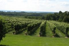 Chateau-Grand-Traverse-Vineyards-1