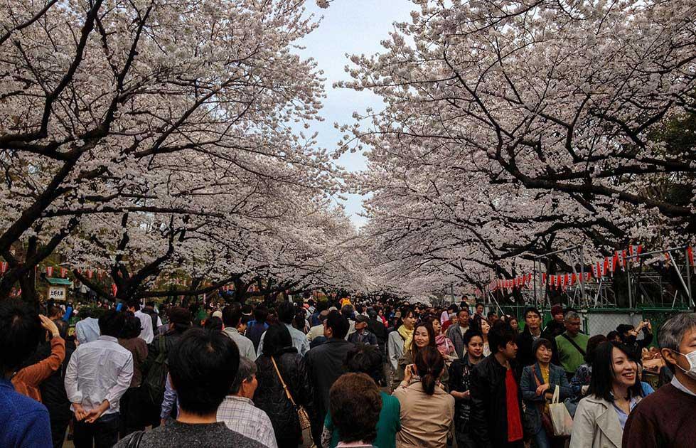 1_Ueno-Park