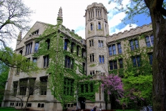University-of-Chicago-19-1