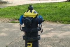 U-M-Fire-Hydrant