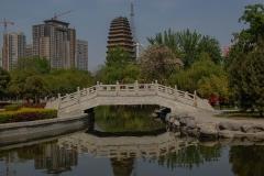 Small-Wild-Goose-Pagoda-2