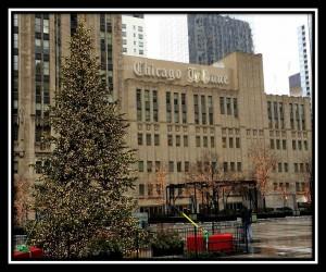 Chicago 1445