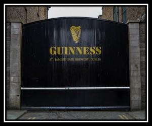 Dublin Y 14