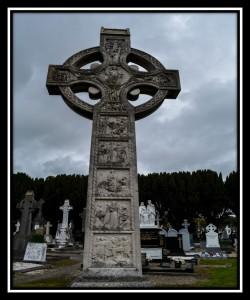 Dublin Y 46