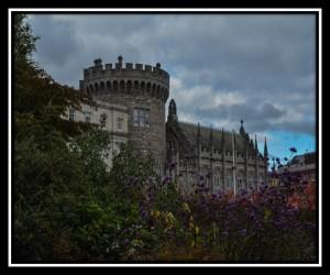 Dublin Y 61