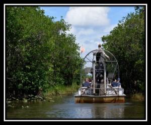 Everglades NP X 15