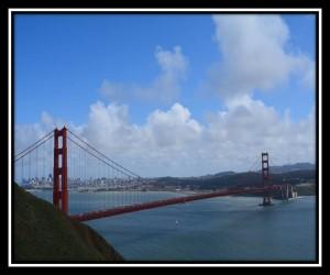 San Francisco X 7