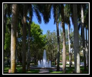 University of Miami X 1