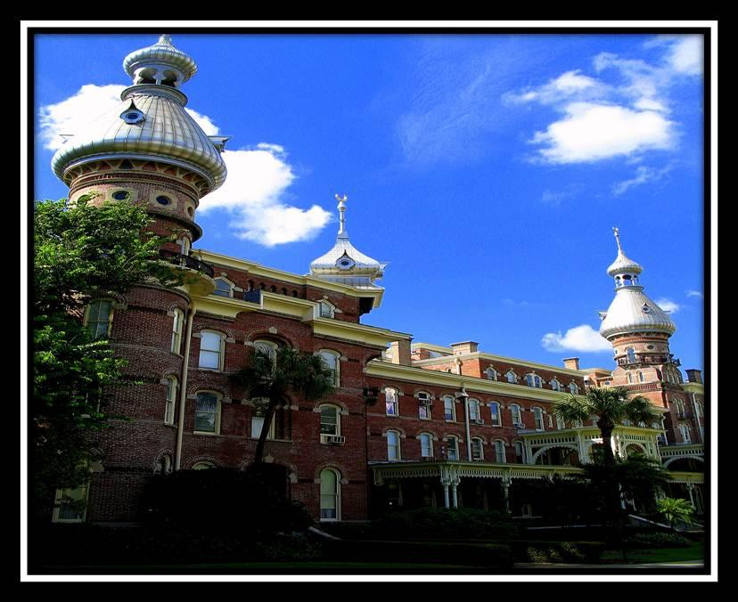 University Of Cincinatti >> University of Tampa