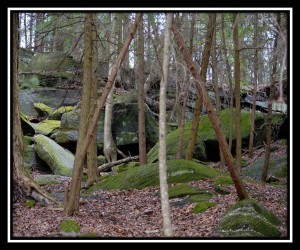Cuyahoga Valley NP X 10