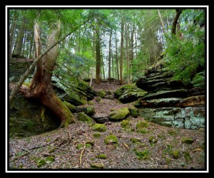 Cuyahoga Valley NP X 12