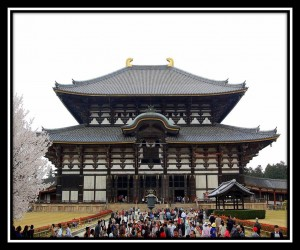 Nara 5