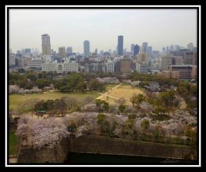 Osaka 7