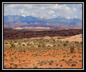 Arches National Park 23