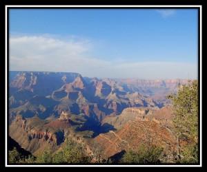Grand Canyon National Park 11