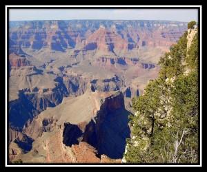 Grand Canyon National Park 5