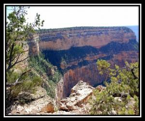 Grand Canyon National Park 6