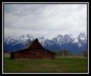 Grand Teton National Park 10
