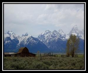 Grand Teton National Park 11