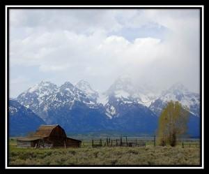 Grand Teton National Park 12