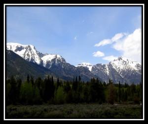Grand Teton National Park 13