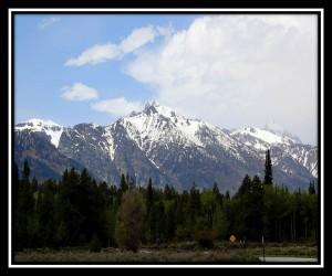 Grand Teton National Park 14