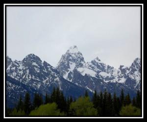 Grand Teton National Park 3