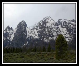 Grand Teton National Park 6