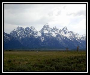 Grand Teton National Park 9