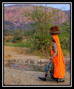 Sawai Madhopur 2
