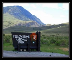 Yellowstone National Park 66