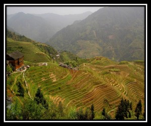 Dragon's Backbone Rice Terraces