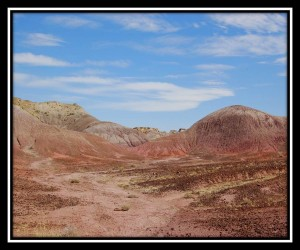 Petrified Forest National Park 14