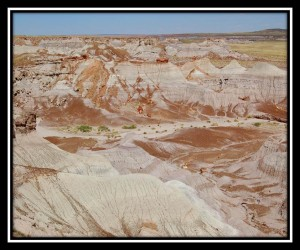 Petrified Forest National Park 16