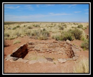 Petrified Forest National Park 18