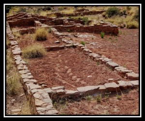Petrified Forest National Park 20