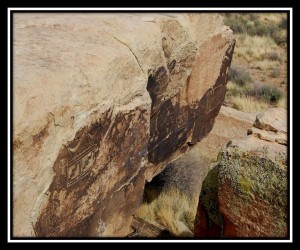 Petrified Forest National Park 24