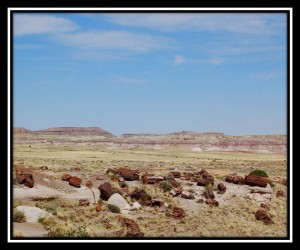 Petrified Forest National Park 7