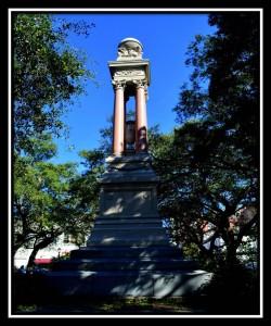 Savannah 10