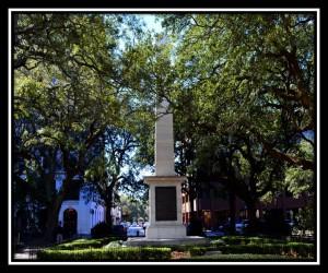 Savannah 11
