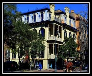 Savannah 8