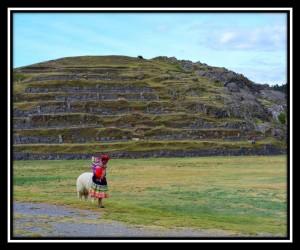 Cuzco 12