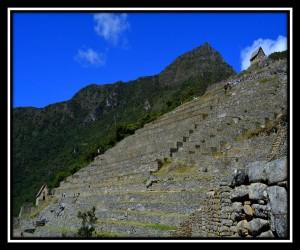Machu Picchu 13